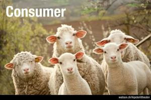 Consumer Schafe